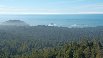 Strawberry Rock is a great viewing spot for the California Coastal National Monument. Trinidad Head is prominent on a clear, sunny day.